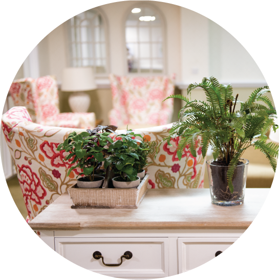 beautiful care home interiors from Furncare